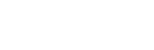 PIP_logo_white